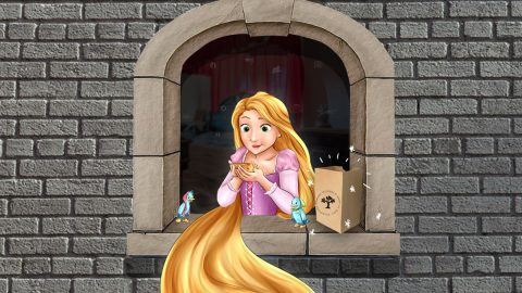 Rapunzel, Chapter 2: The special package
